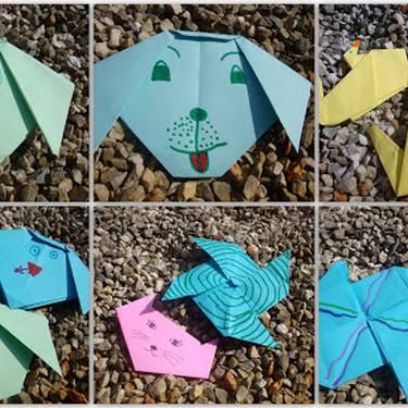 Origami tailerra