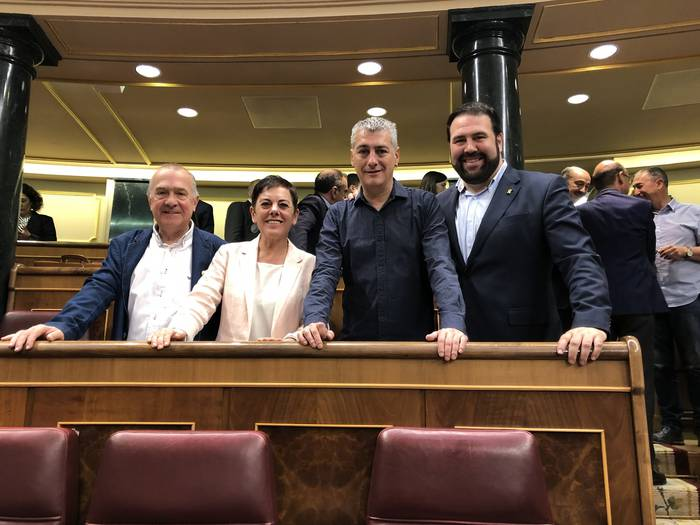 #A10 Mertxe Aizpurua, Madrilgo Diputatuen Kongresurako EHBilduren Gipuzkoako zerrendaburua